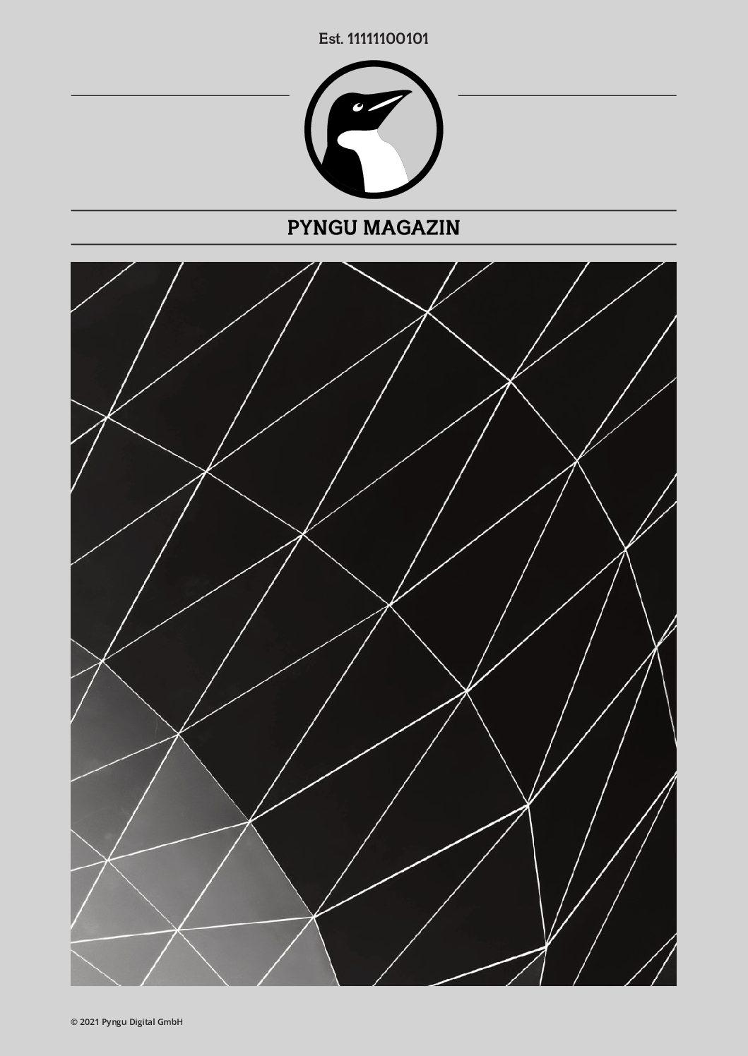 Pyngu Mag Titelseite pdf