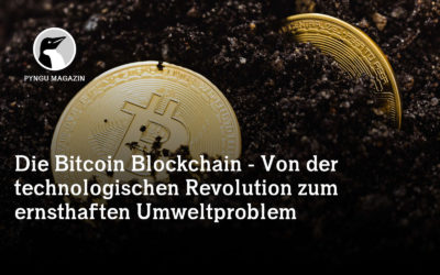 Die Bitcoin Blockchain – Von der technologischen Revolution zum ernsthaften Umweltproblem